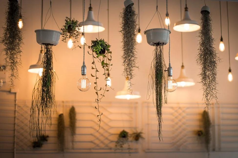 Interior designer lighting
